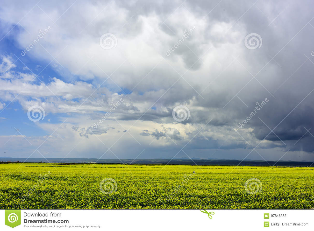 The Beautiful Scenery Of Flowers And Blue Sky Stock Image Image Of