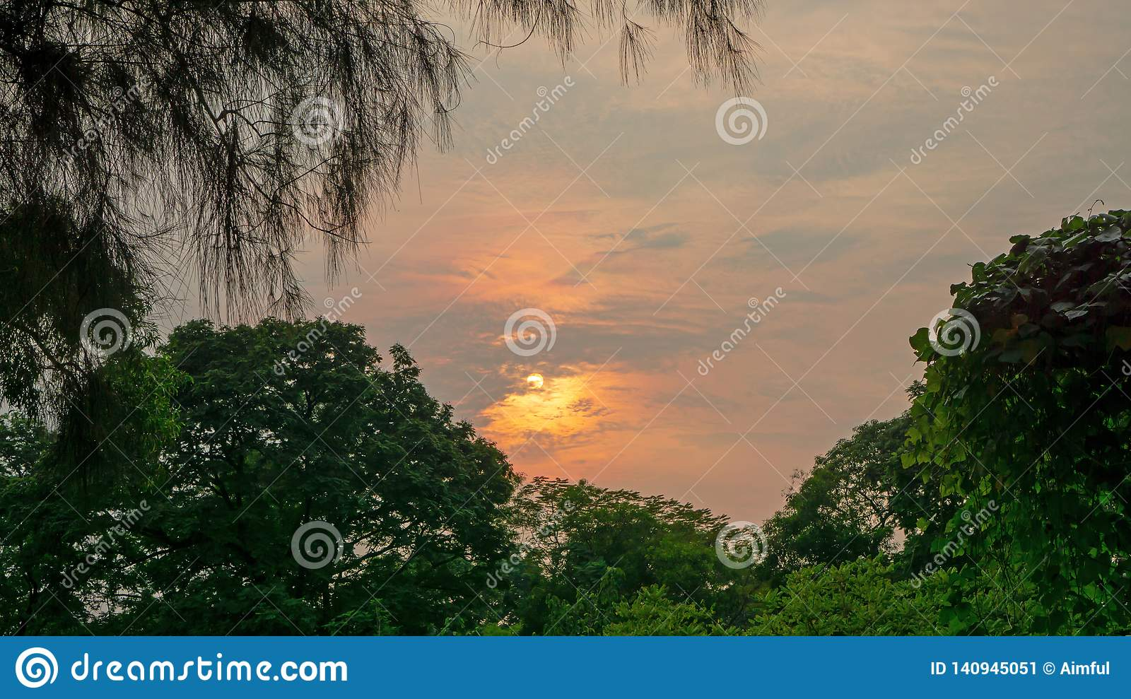 Beautiful scenery sunset with glowing orange light painted on cloudy sky become to twilight dawn above the green leaves trees