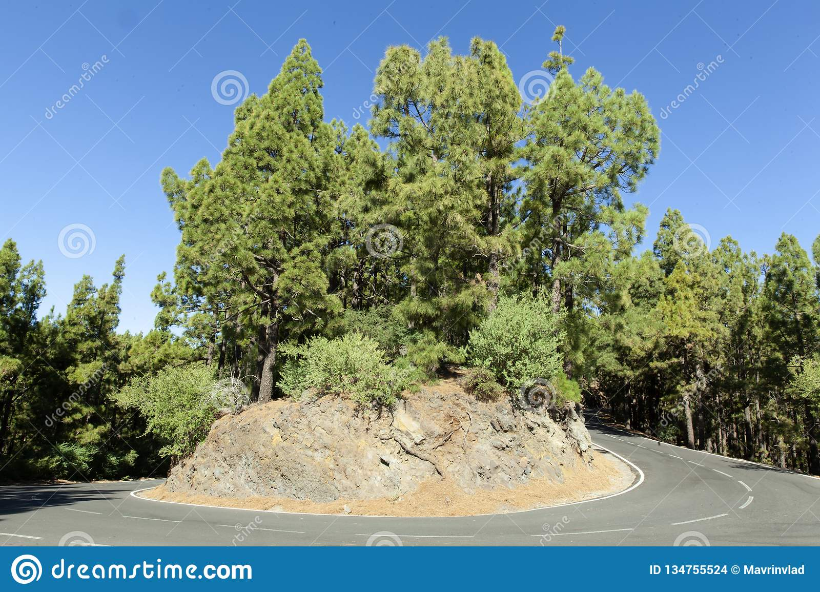 Picturesque hairpin bend on Tenerife