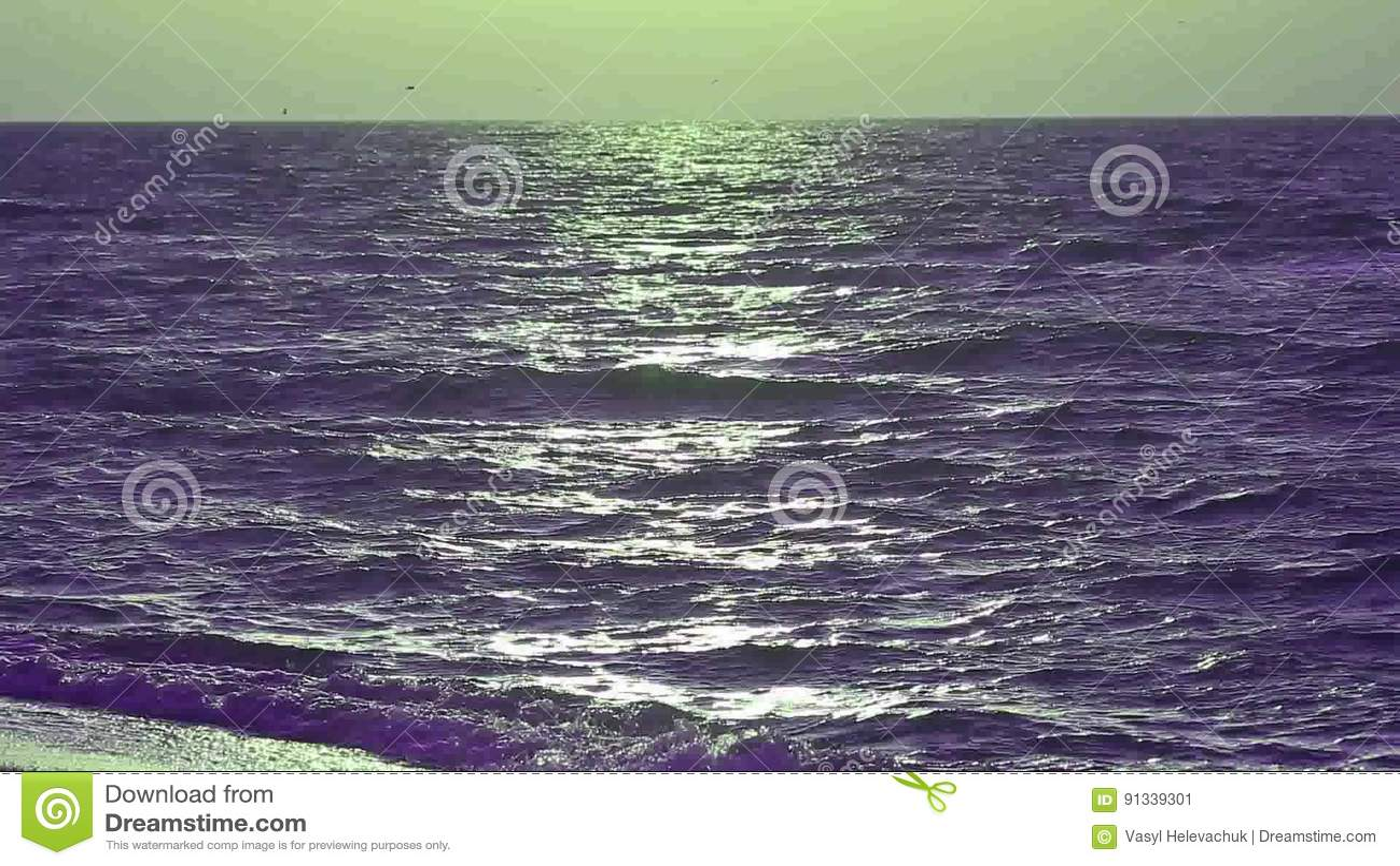 Sea sound audio
