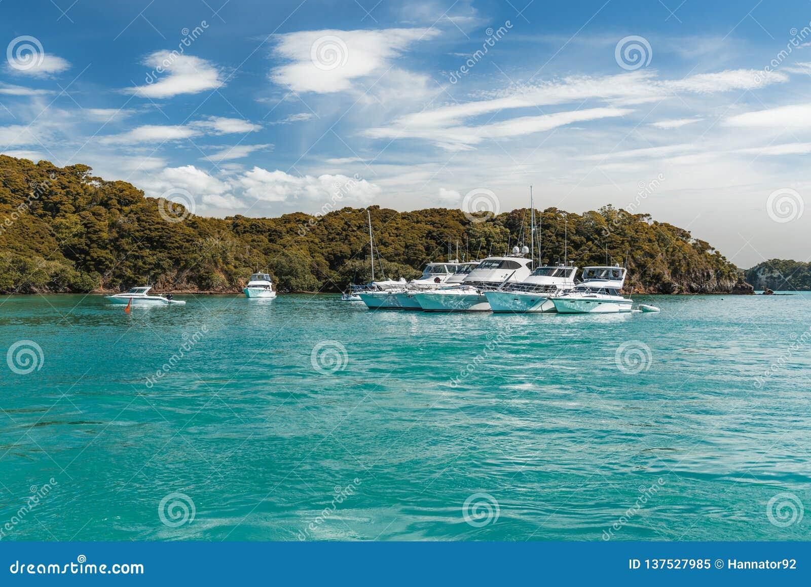 Luxury yachts docked in sea