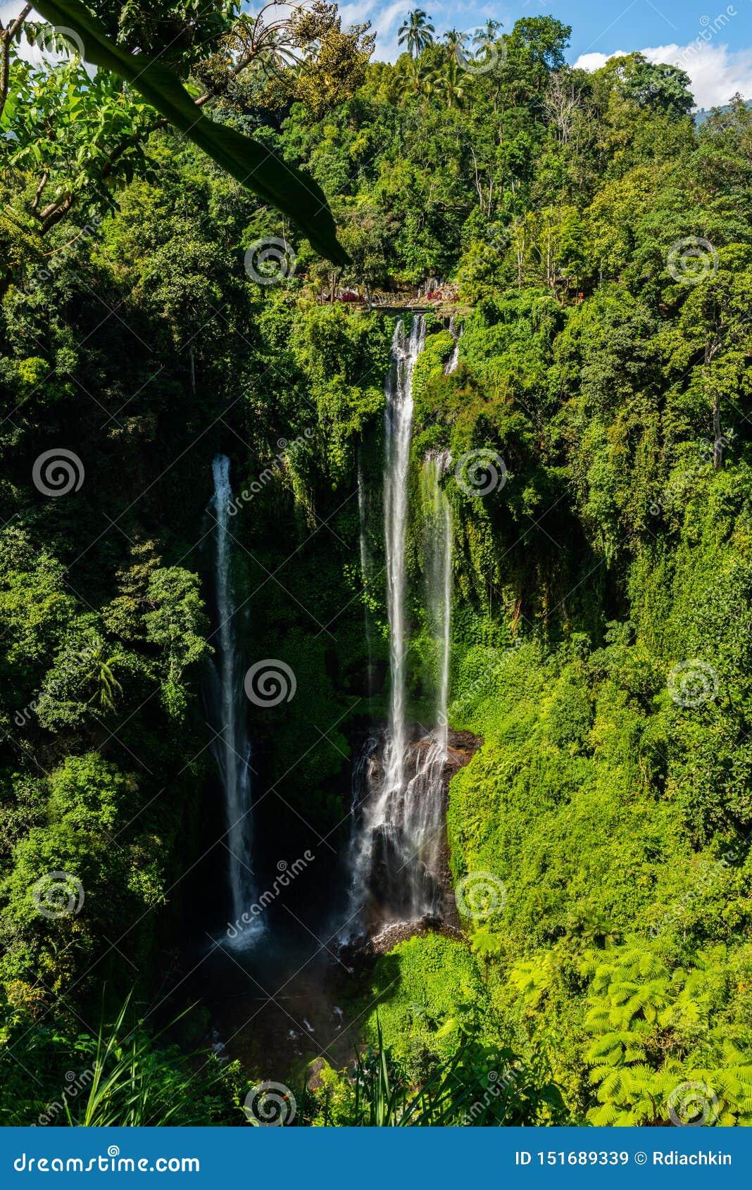 Beautiful the Sekumpul waterfall in Bali, Indonesia
