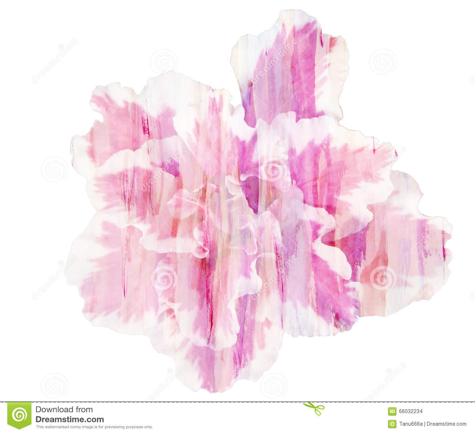 Beautiful Single Pink Flower Azalea Watercolor Illustration