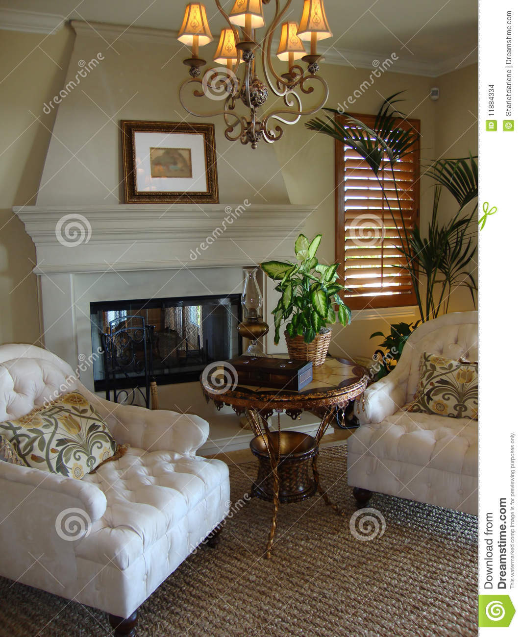 Beautiful sitting room stock photo image of house plant for Sitting room photos