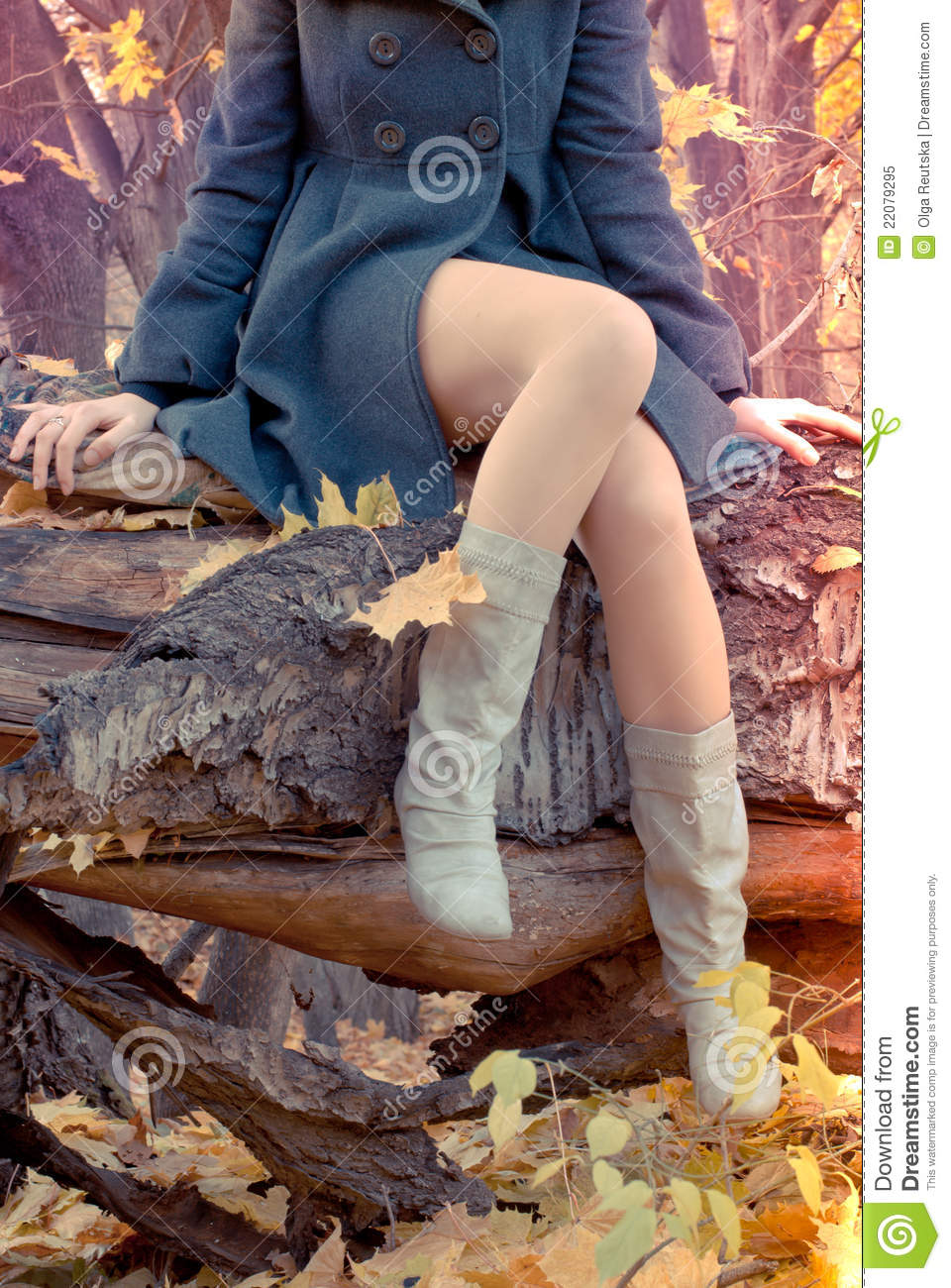 Beautiful slender Legs in the autumn forest