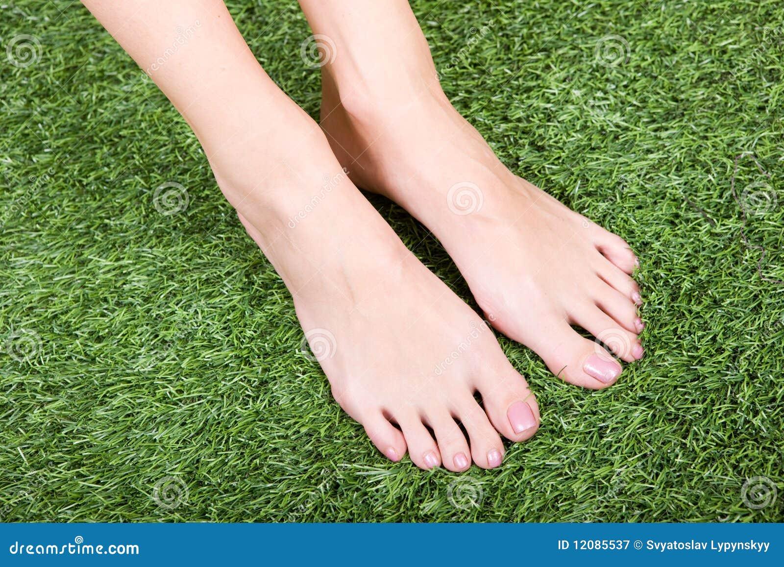 beautiful slim female feet on green grass stock image - image of