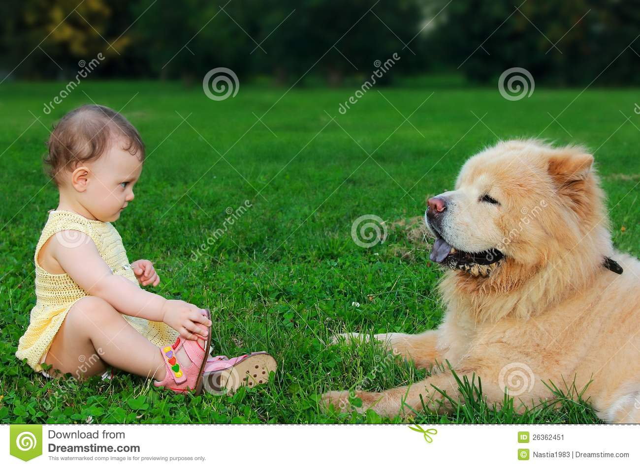 beautiful fashion trends : beautiful small baby girl looking at dog