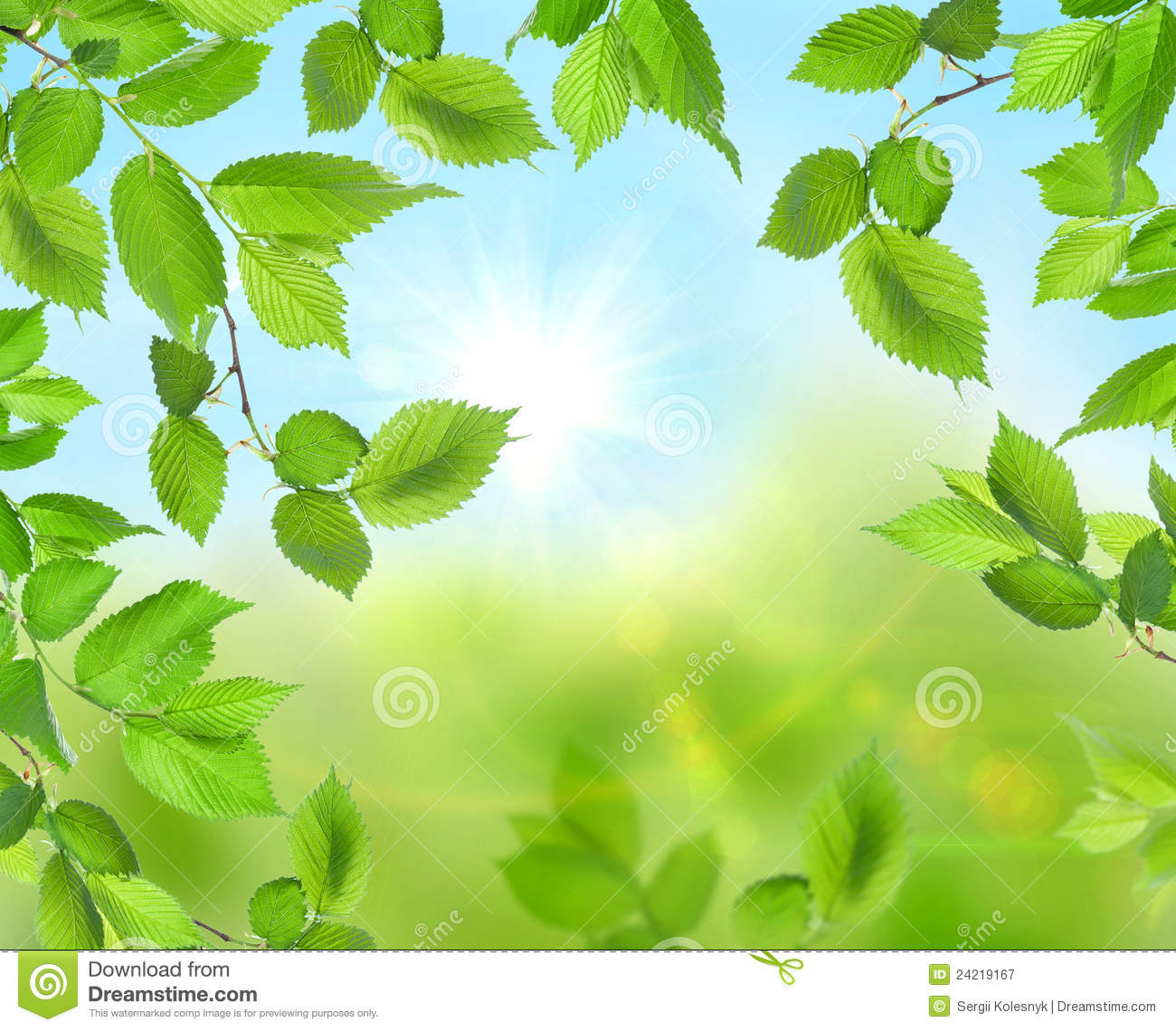 Beautiful Soft Green Background Royalty Free Stock