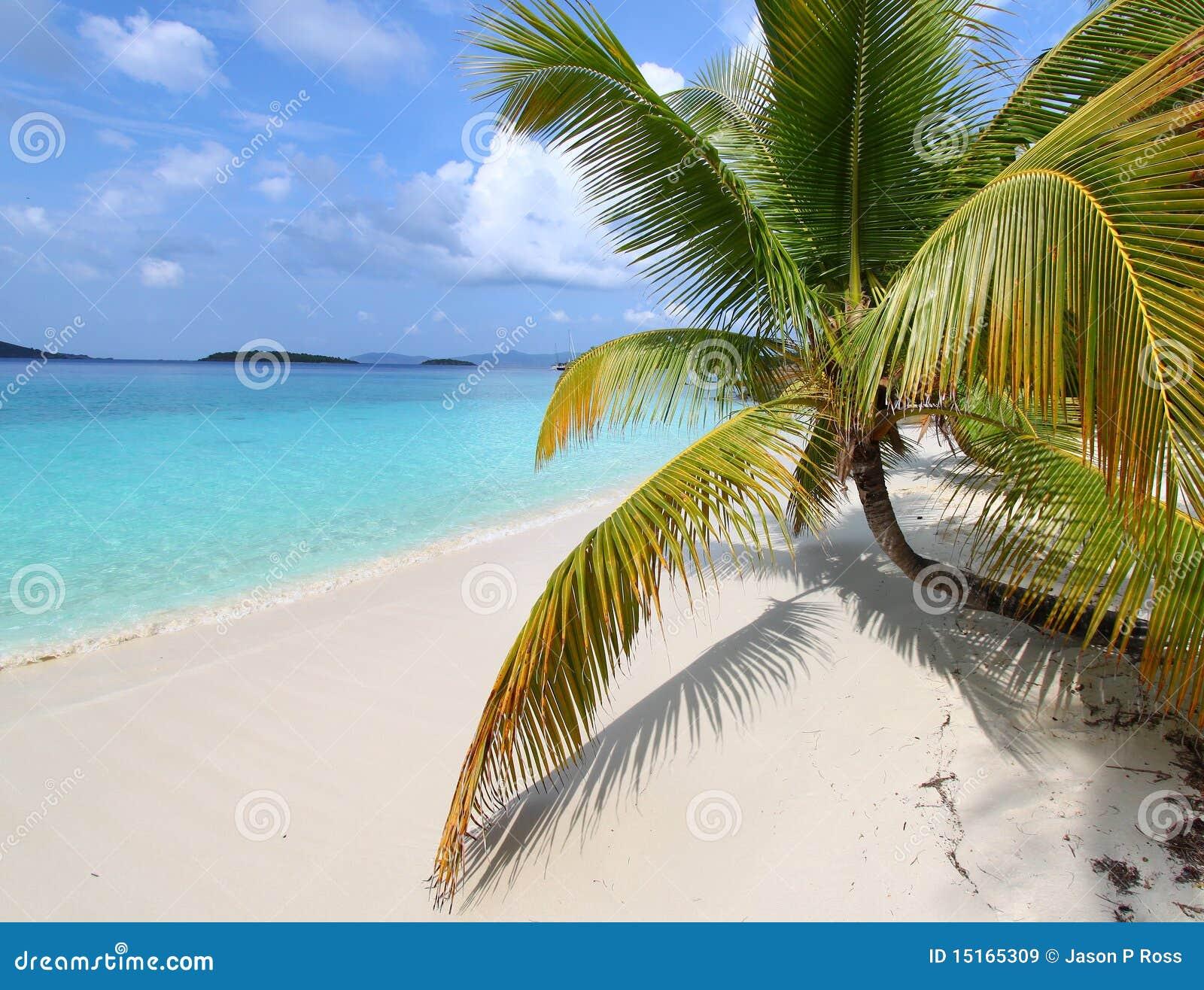 Solomon Islands Beach: Beautiful Solomon Bay (USVI) Stock Image