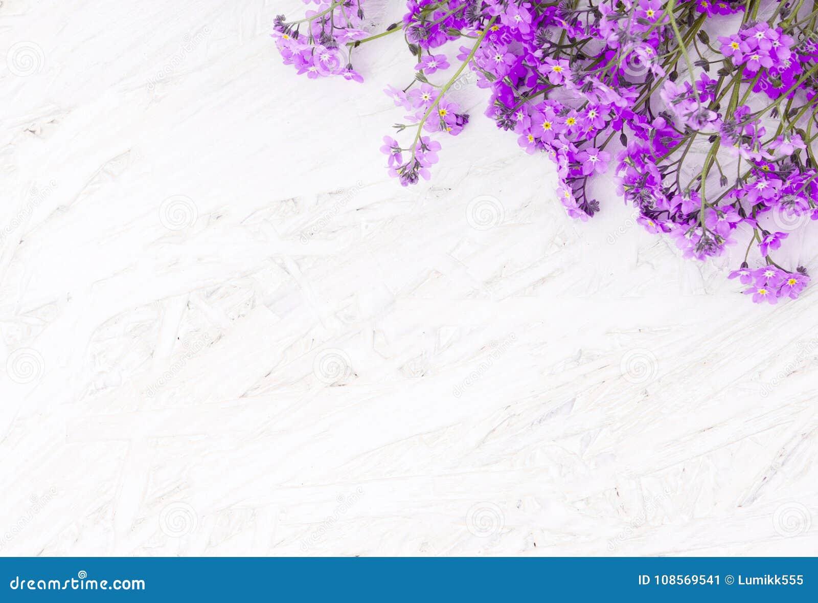 Beautiful Spring Flower Background Stock Image Image Of Light