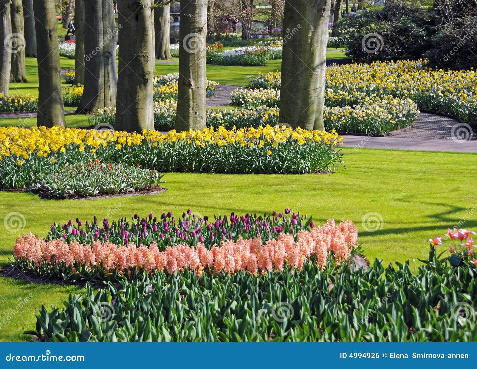Free stock photo of garden - Beautiful Spring Garden