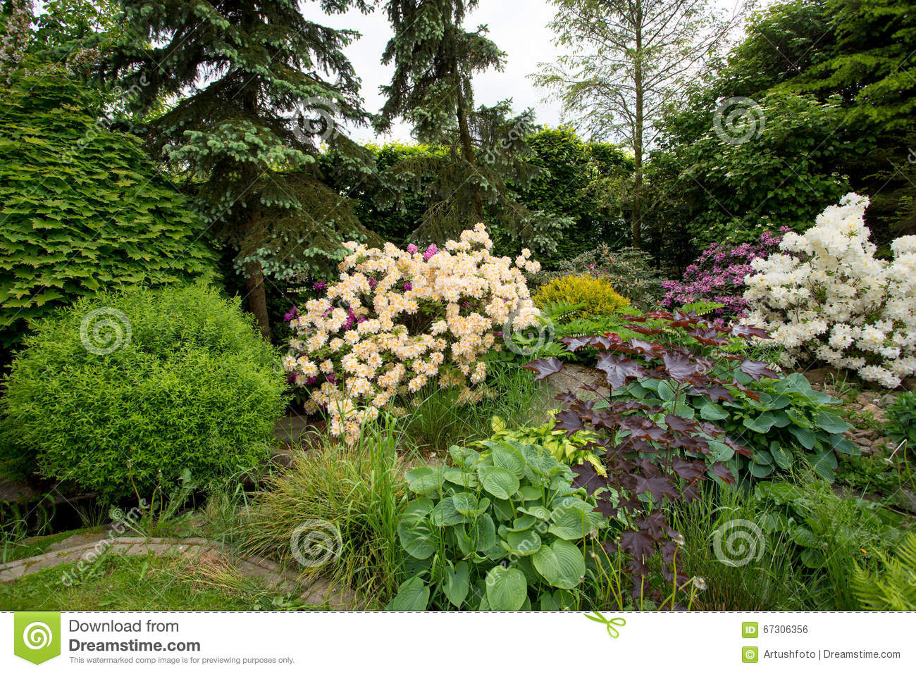 Beautiful Spring Garden Design With Rhododendron Stock Photo