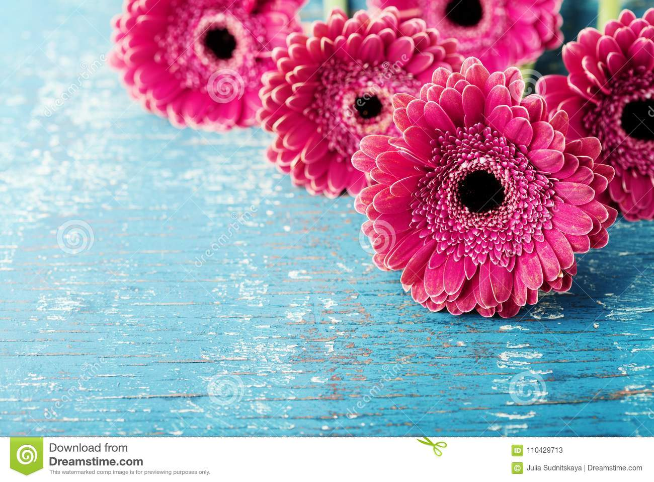 Beautiful spring greeting card for Mother or Womans day with fresh gerbera daisy flowers on vintage turquoise background.