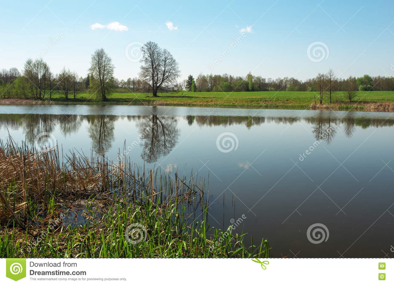 Landscape Boulders Spokane : River with blue sky and trees royalty free stock image