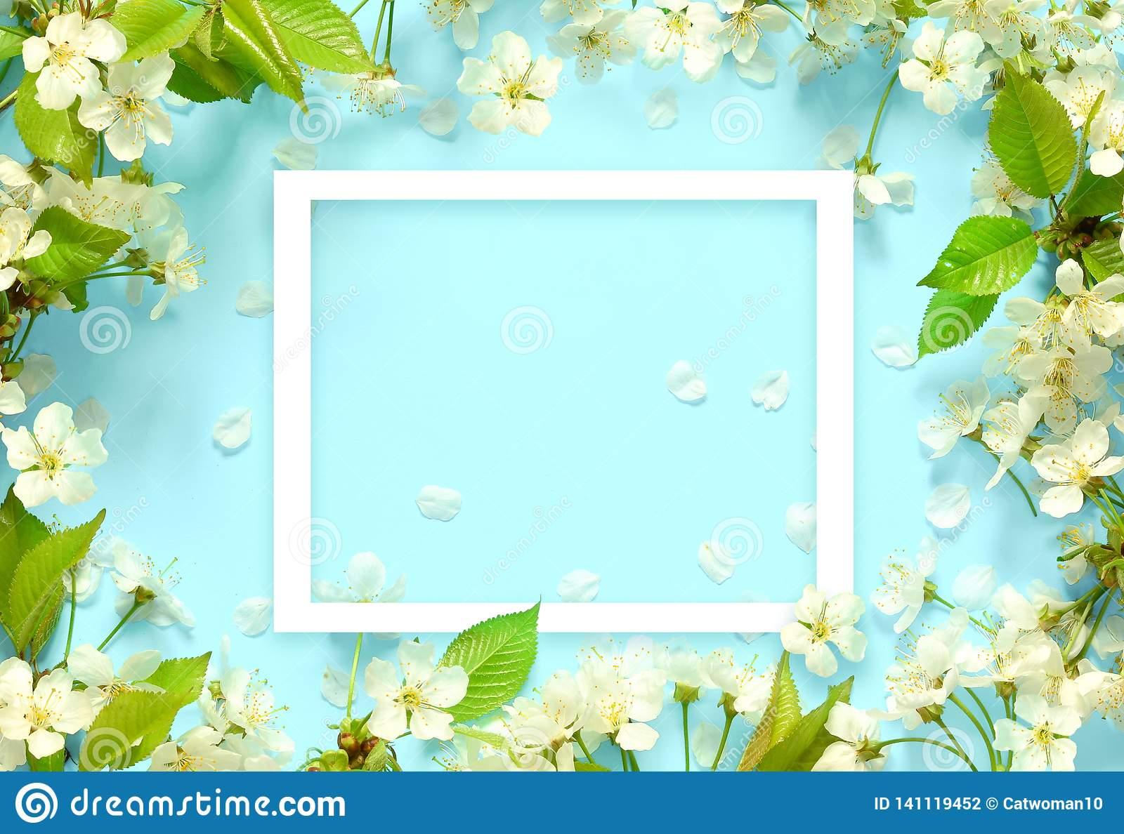 Beautiful spring nature background with lovely blossom, petal a on turquoise blue background , top view, frame. Springtime concept