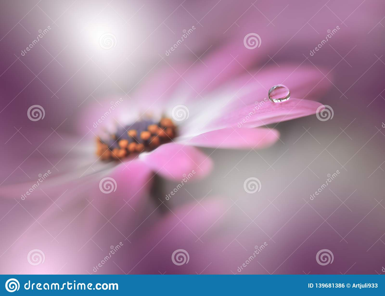 Beautiful Spring Nature Blossom Violet Background Copy Space