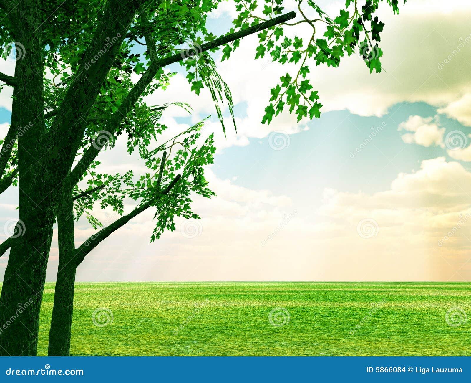 Spring Beautiful scenery