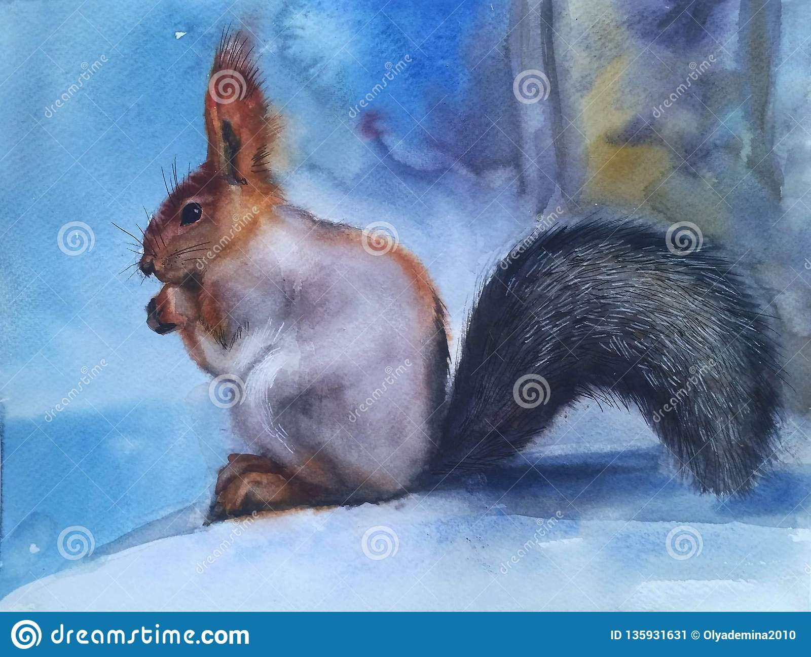 Beautiful squirrel in the snow