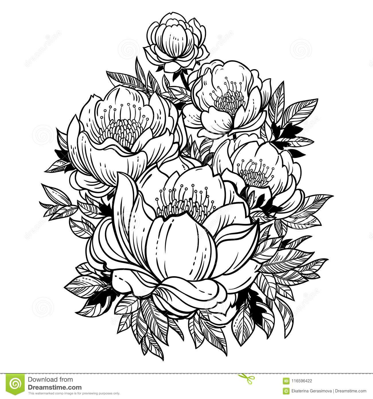 Beautiful Stem Of Magnolia Dogrose Or Peony Flowers Stock Vector Illustration Of Card Flora 116596422