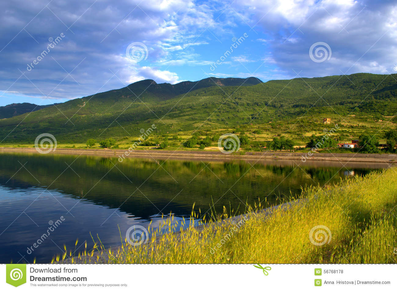 Beautiful Summer Lake View Stock Photo Image 56768178