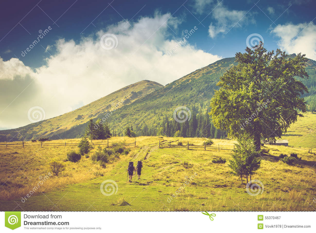 Beautiful summer mountain landscape.Tourists with backpacks climb to the top of the mountain.