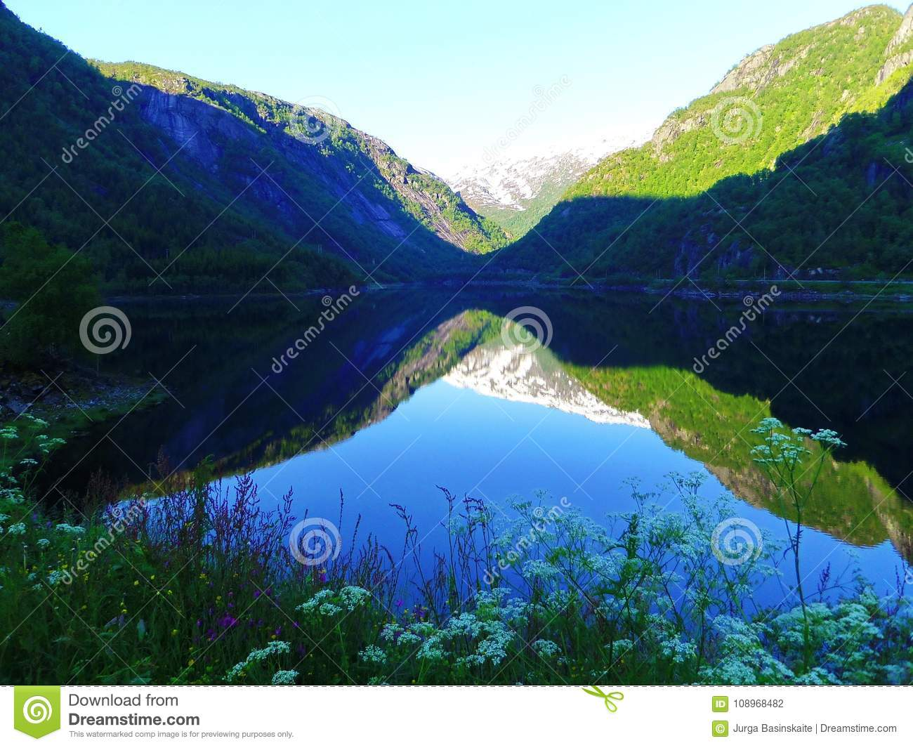 Lake, plants and beautiful mountains, Norway