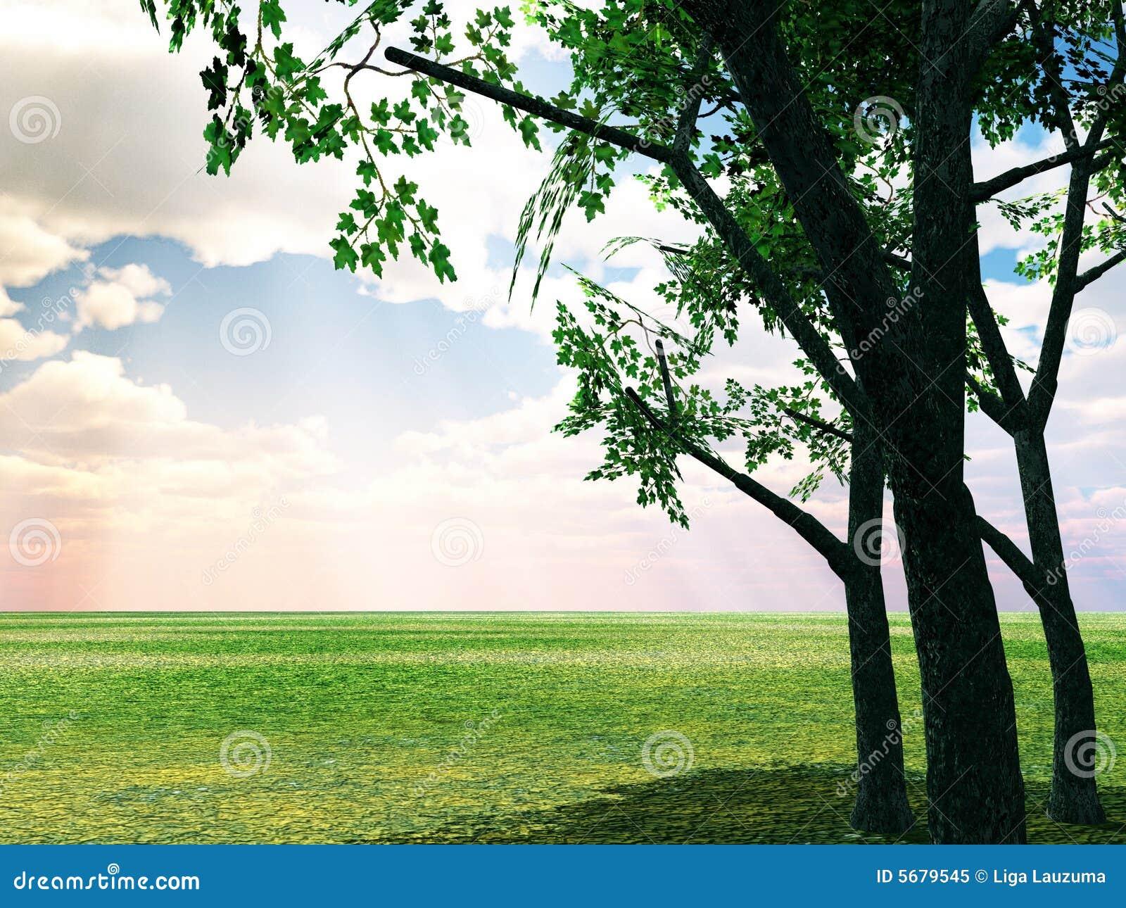 Beautiful Summer Scenery Stock Illustration Image Of Dull