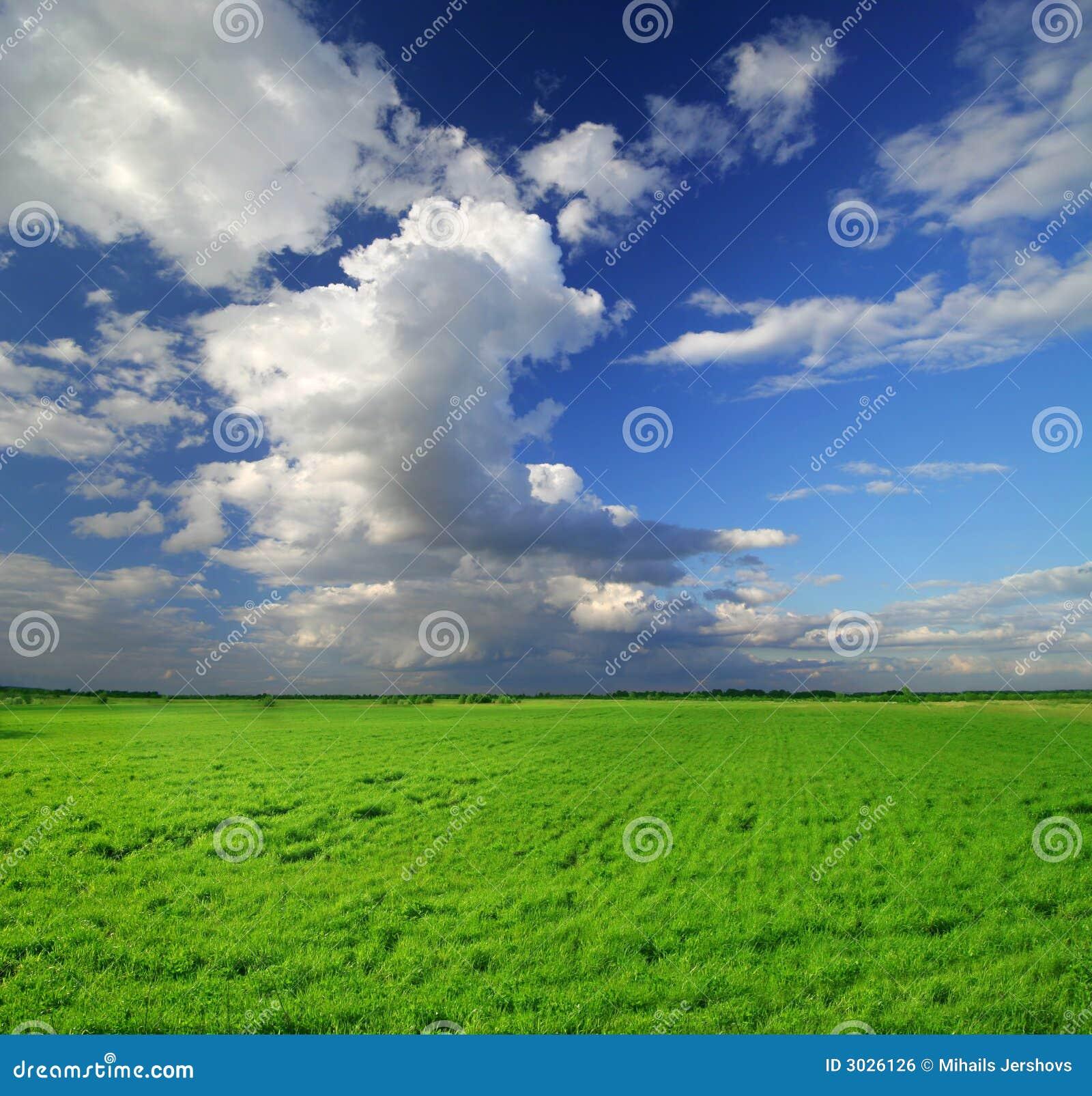 Beautiful Garden Scene Sunny Day Stock Image - Image of ...  |Sunny Beautiful Day