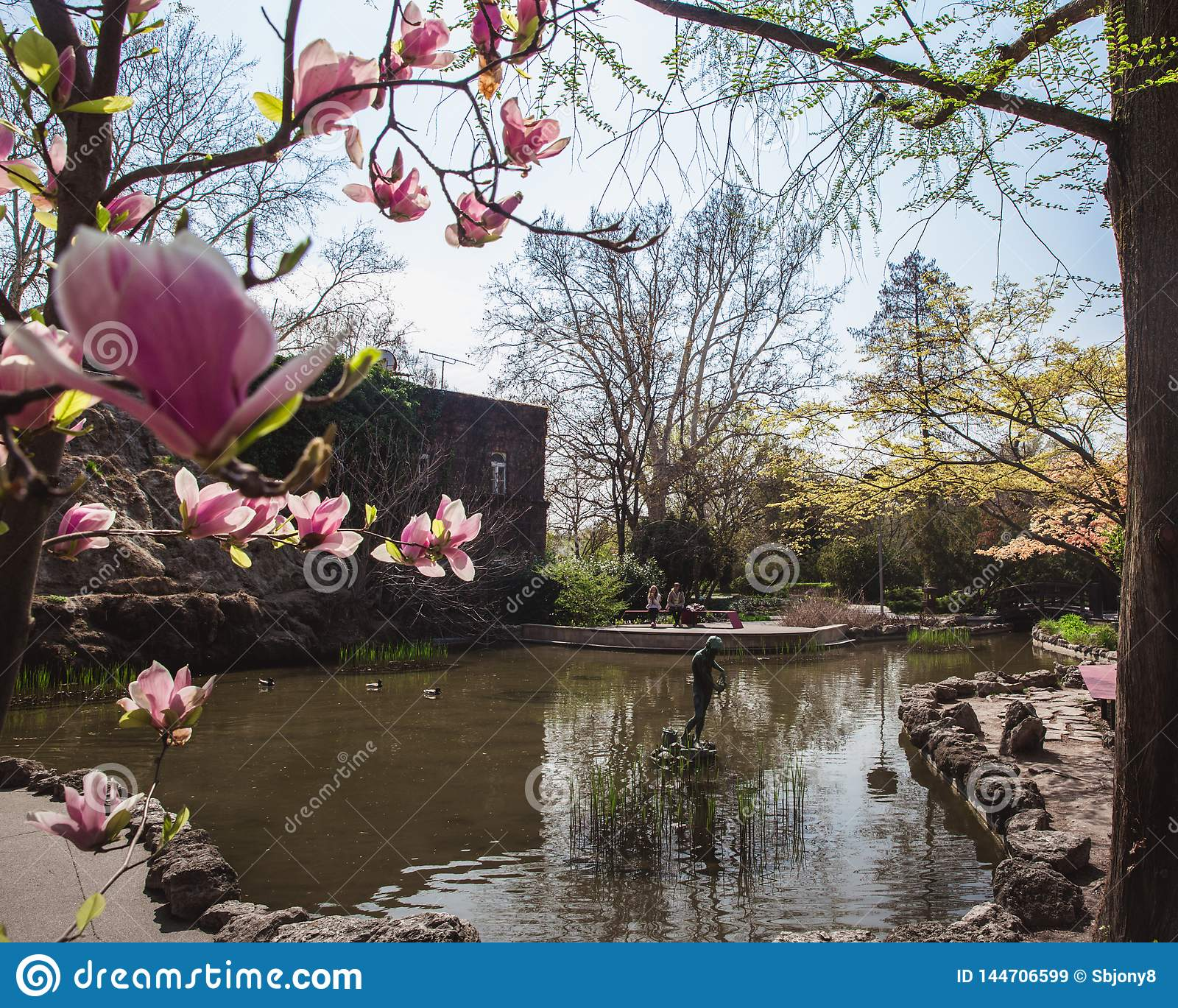 Beautiful sunny spring day in japanese garden in Budapest
