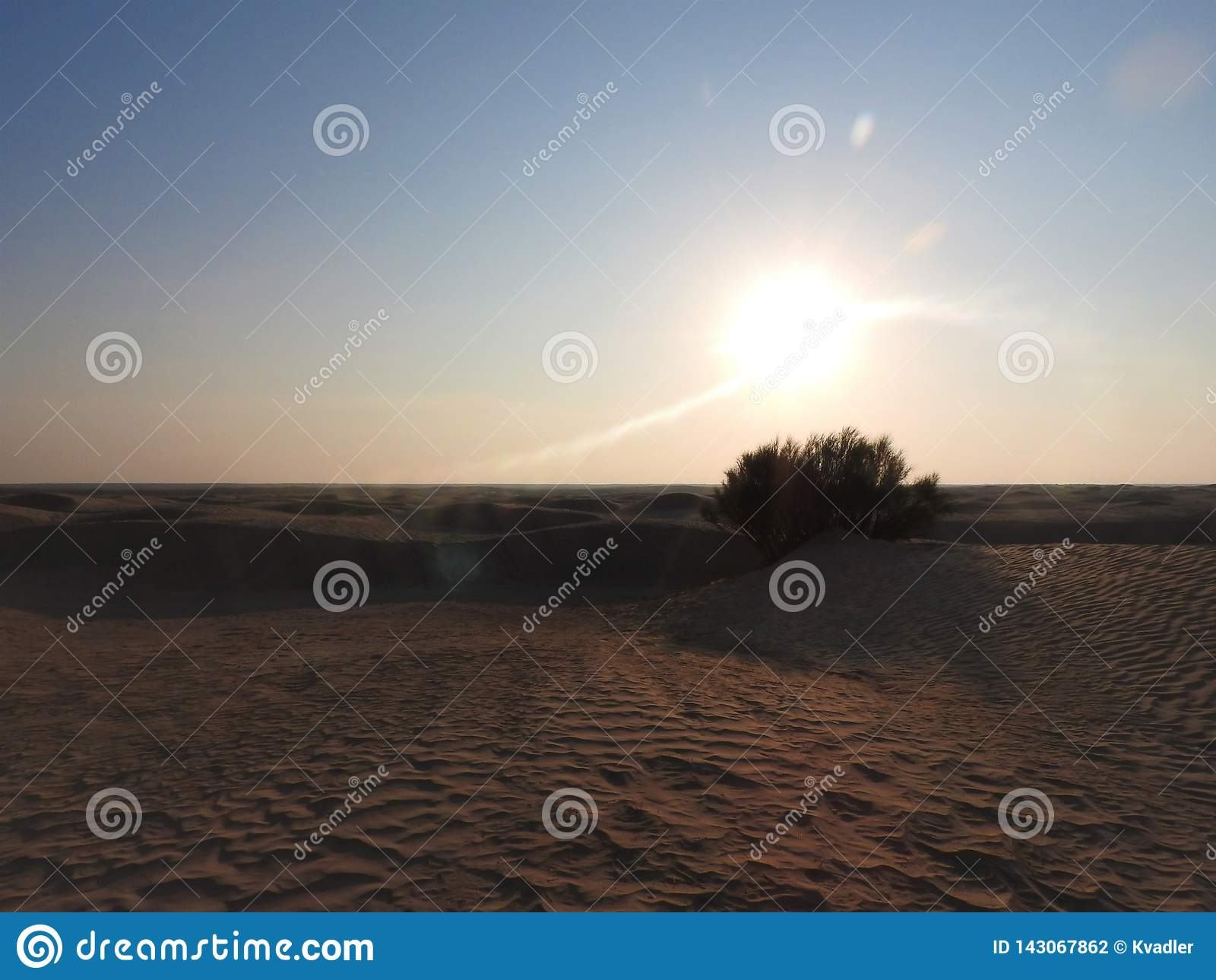 Beautiful sunrise and sand dunes in Sahara desert, Africa