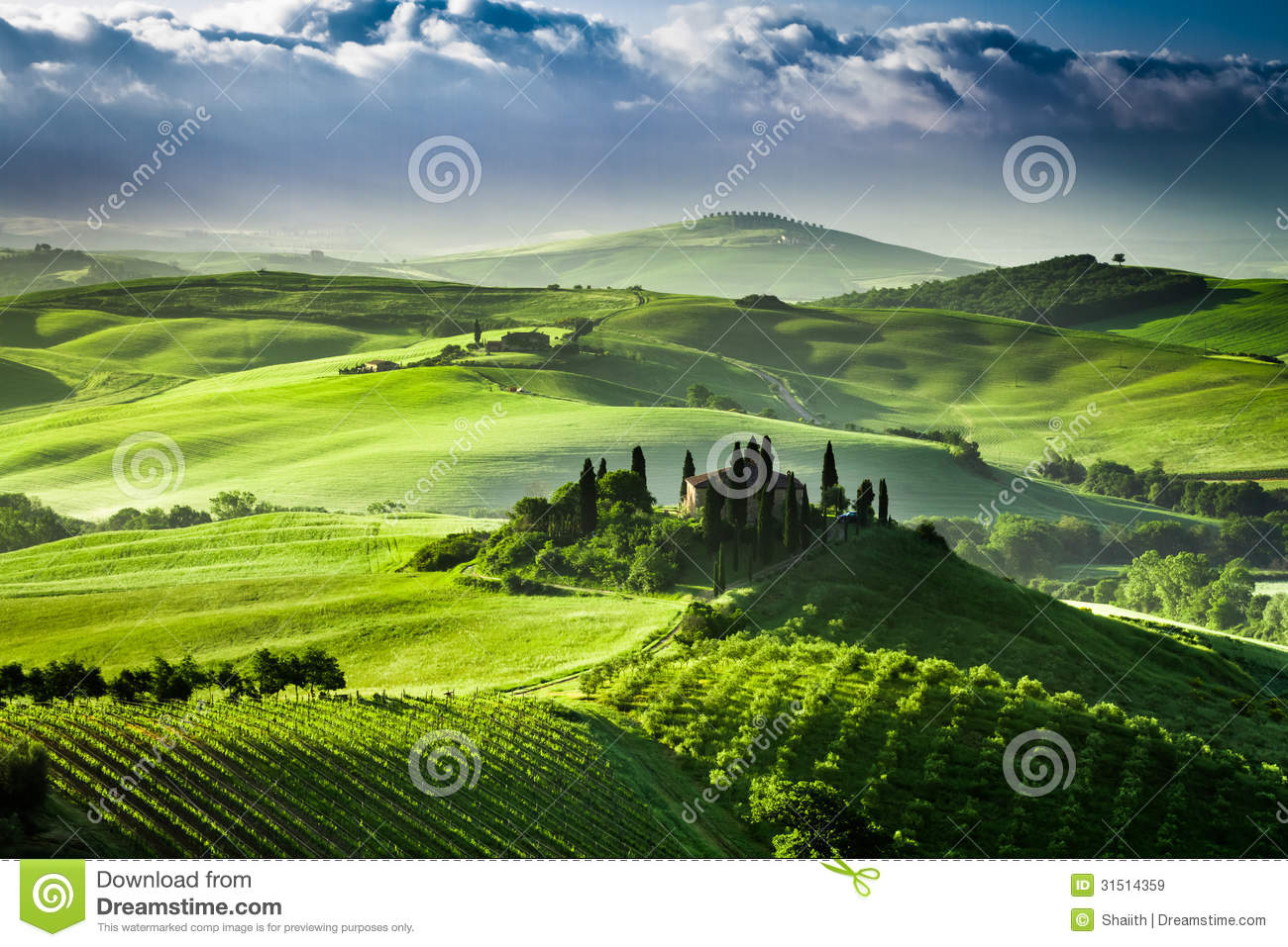 Beautiful Sunrise In The Valley San Quirico D Orcia Stock Image Image