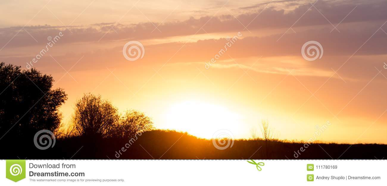 Beautiful sunset in the field outdoors
