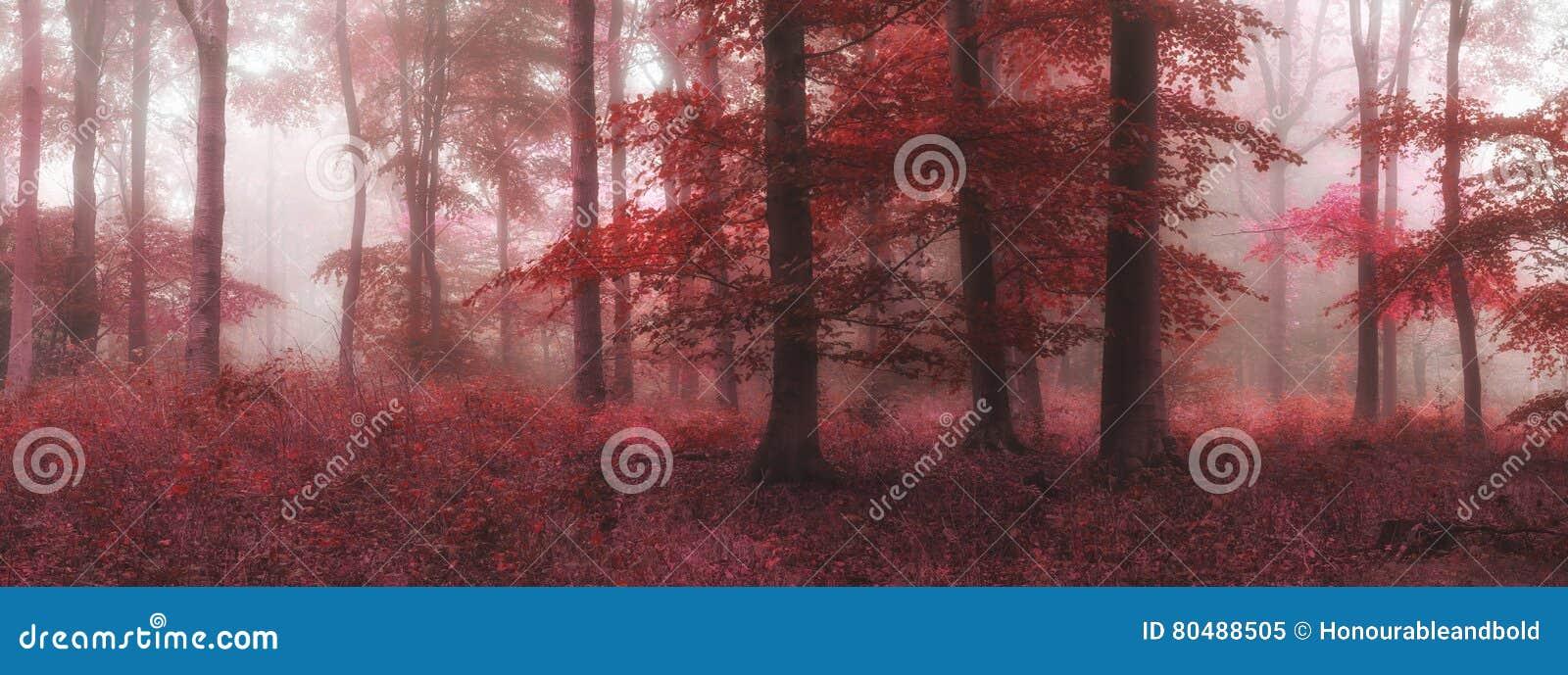 Beautiful surreal alternate color fantasy Autumn Fall forest lan