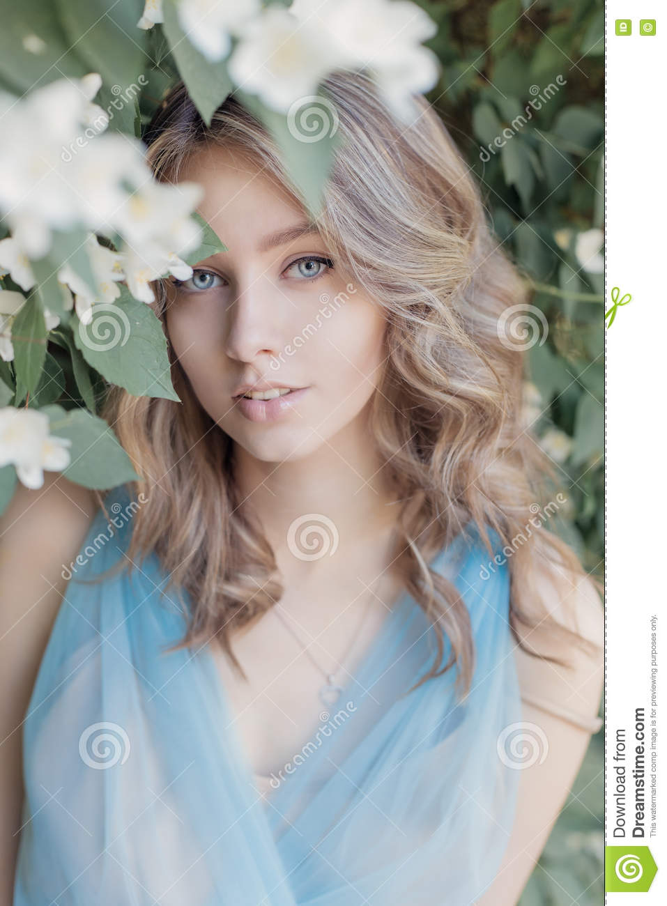 Beautiful sweet tender girl with blue eyes in a blue dress with beautiful sweet tender girl with blue eyes in a blue dress with light hair stranded in jasmine flowers stock photo 74697806 megapixl izmirmasajfo
