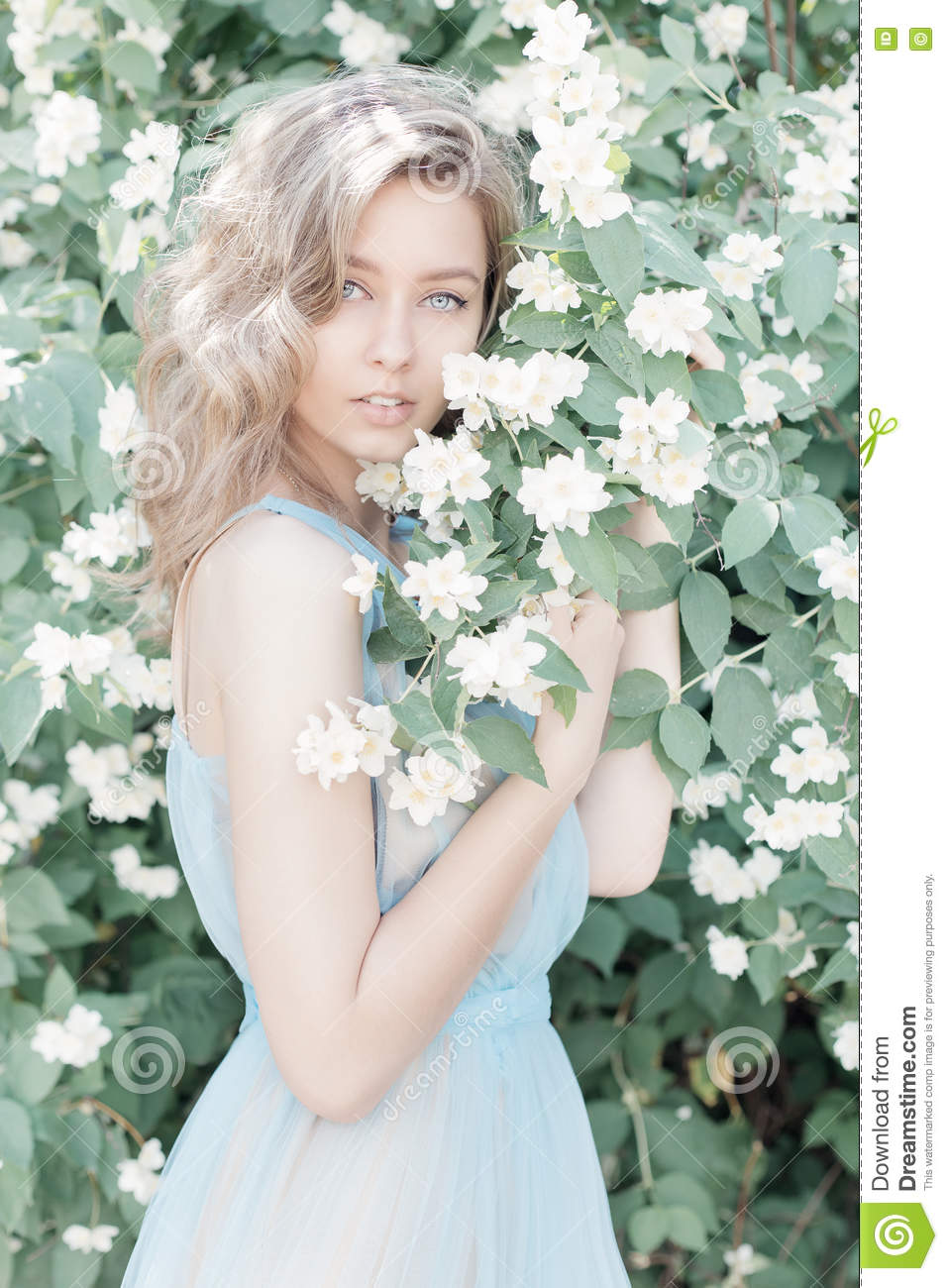 Beautiful sweet tender girl with blue eyes in a blue dress with beautiful sweet tender girl with blue eyes in a blue dress with light hair stranded in jasmine flowers izmirmasajfo