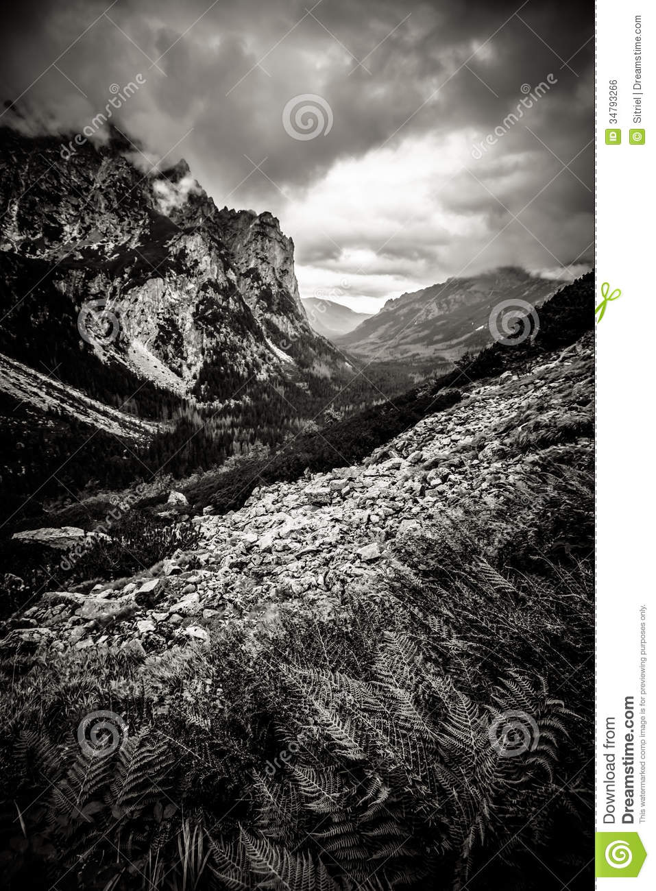 Beautiful Tatry mountains landscape in black and white