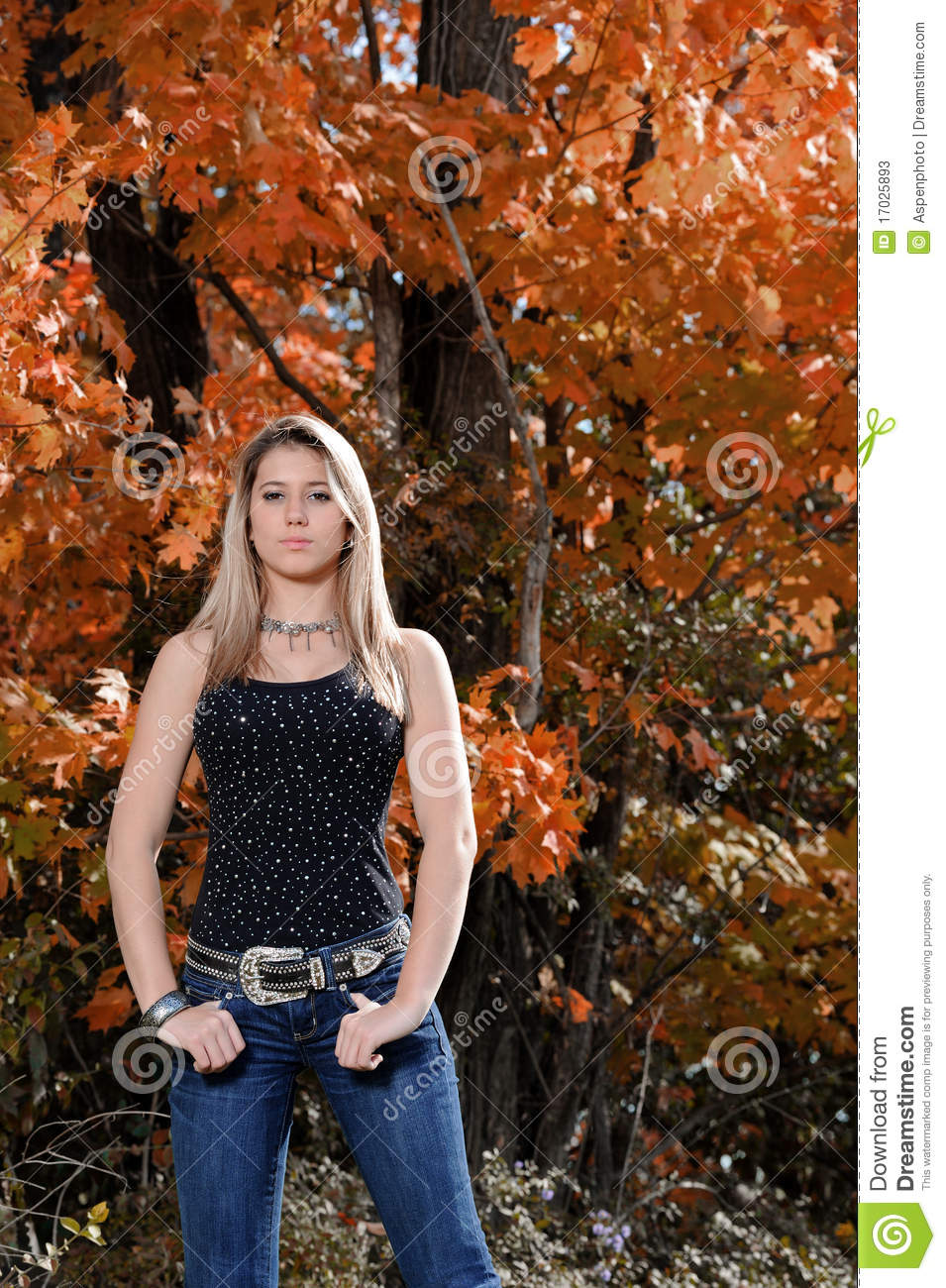 Beautiful Teen Country Girl Among Fall Foliage Stock