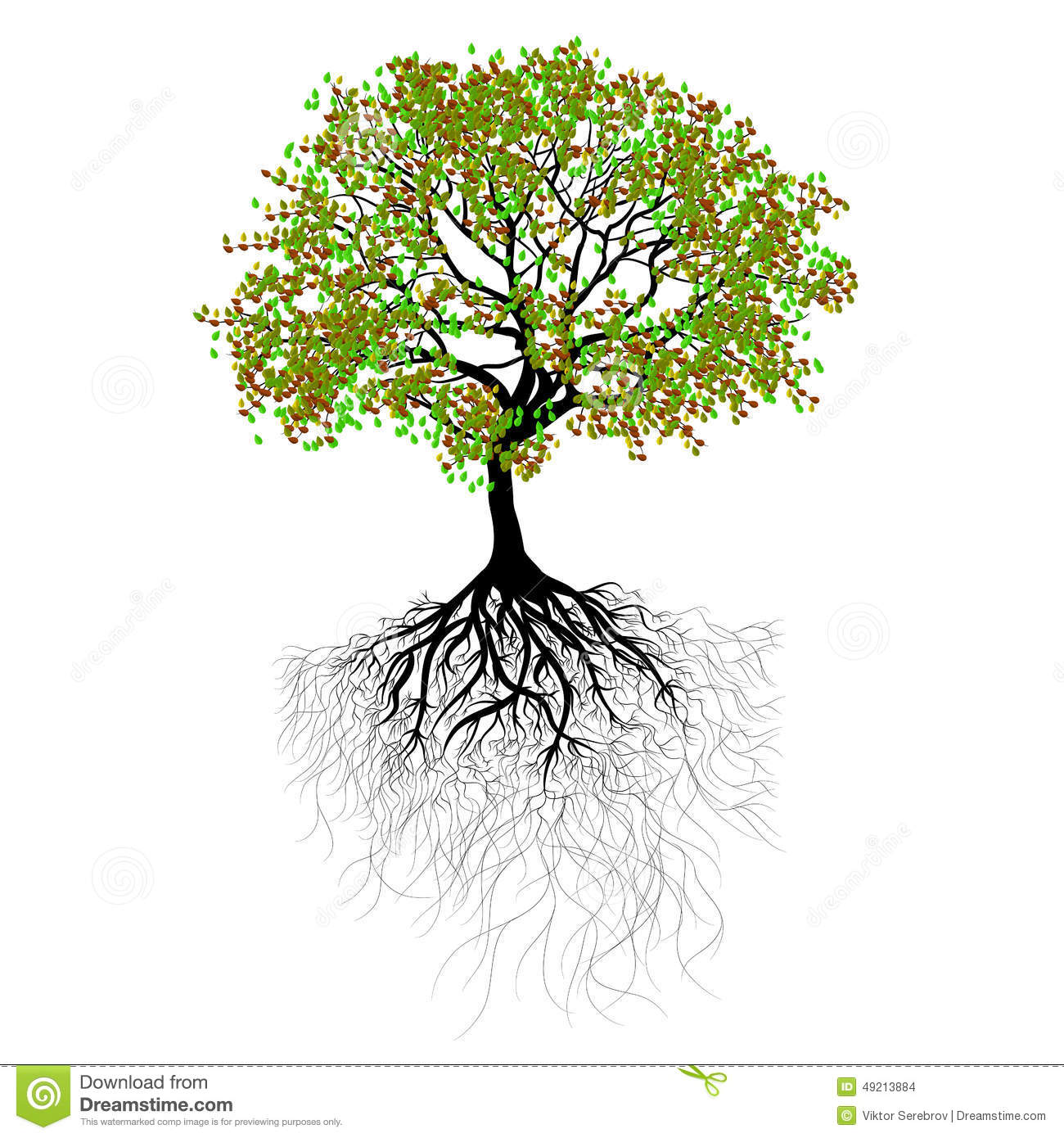 Gallery For gt Beautiful Tree With Roots