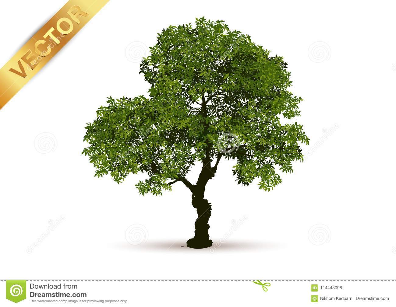 Beautiful Tree Vector On A White Background Stock Vector