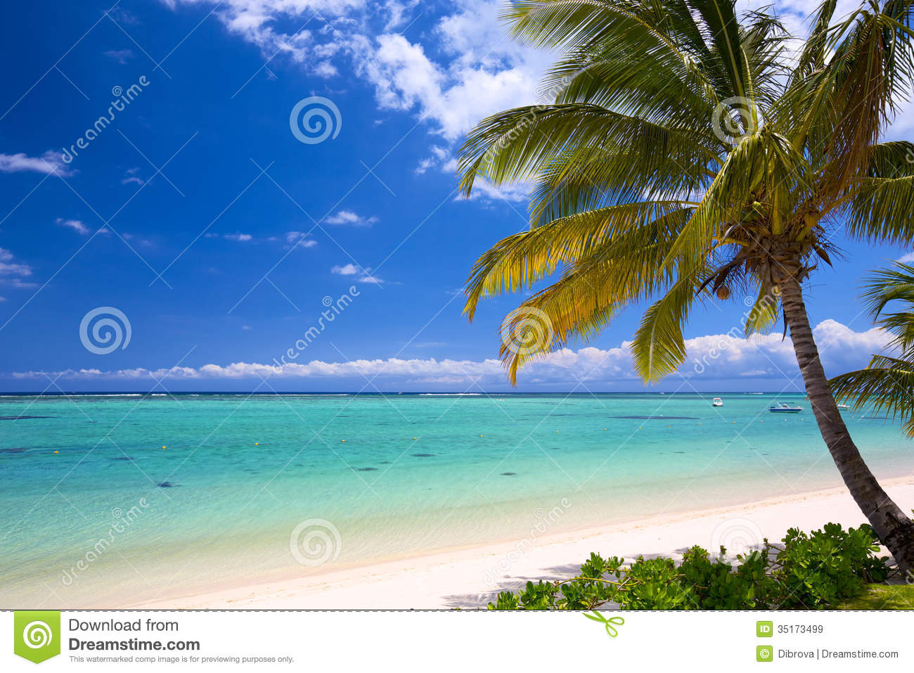 Tropical Island Beach Ambience Sound: Beautiful Tropical Beach Stock Image. Image Of Travel