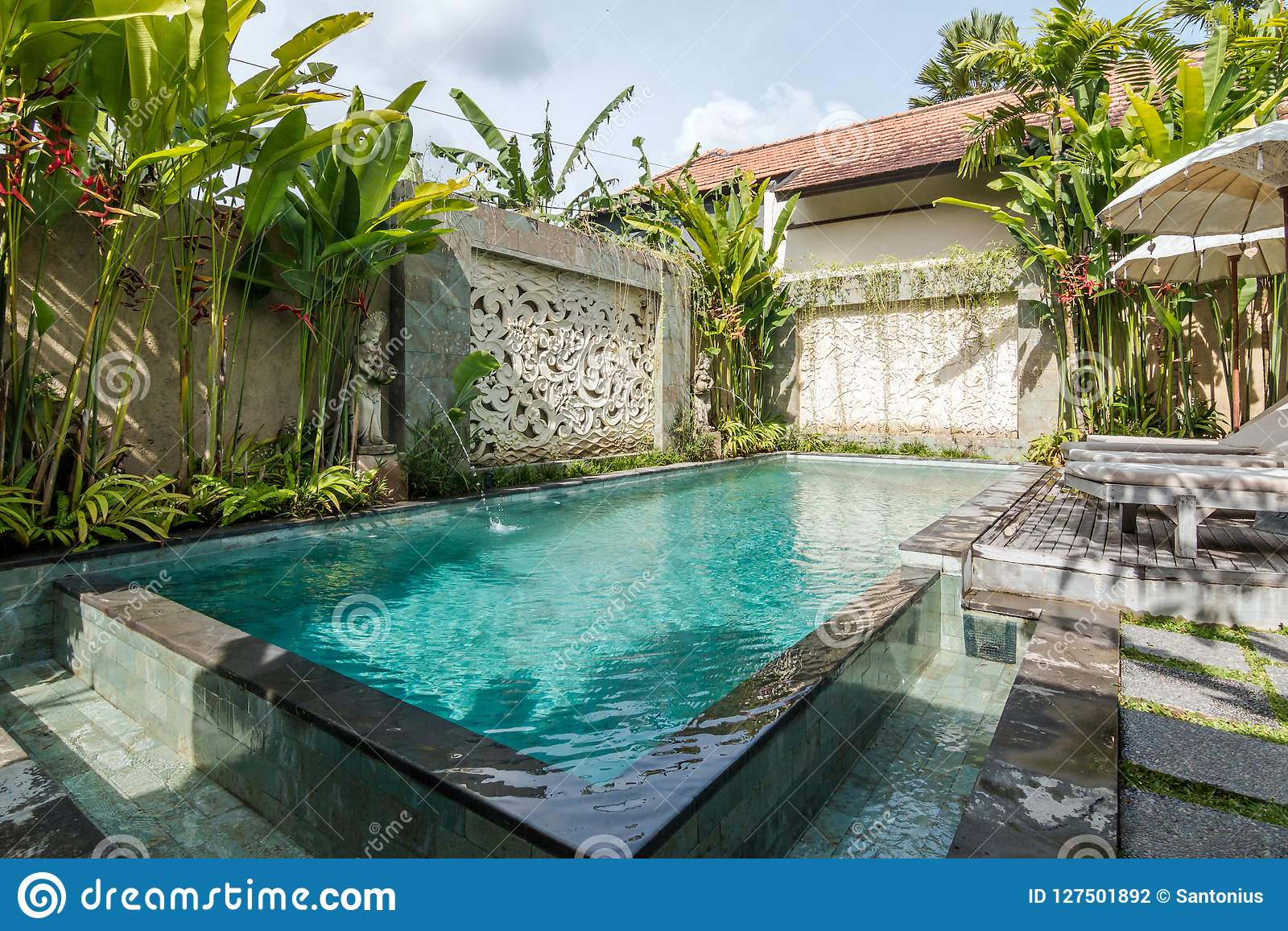 Beautiful And Tropical Swimming Pool Stock Photo - Image of ...