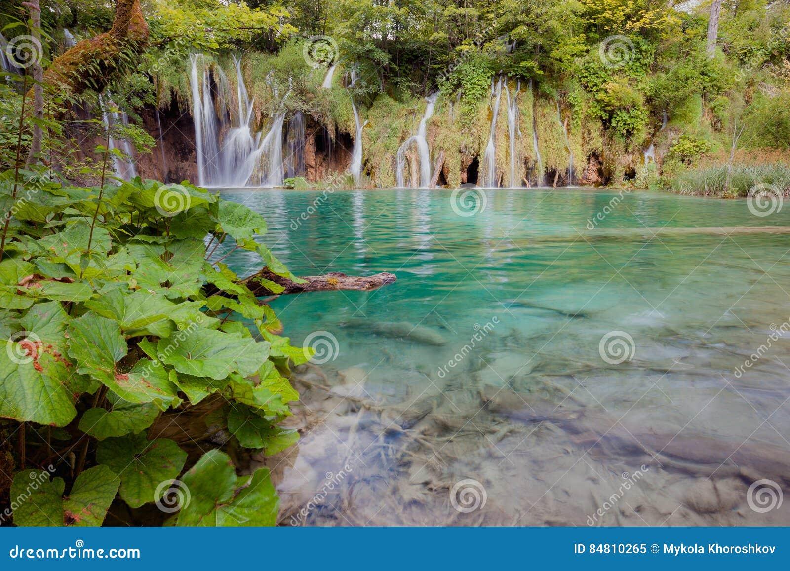 Download Beautiful Tropical Waterfall Stock Image - Image of creek, lake: 84810265