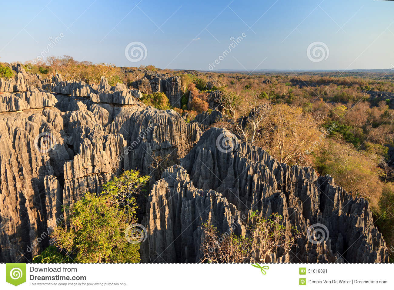 Beautiful Tsingy Landscape Stock Image. Image Of Beautiful