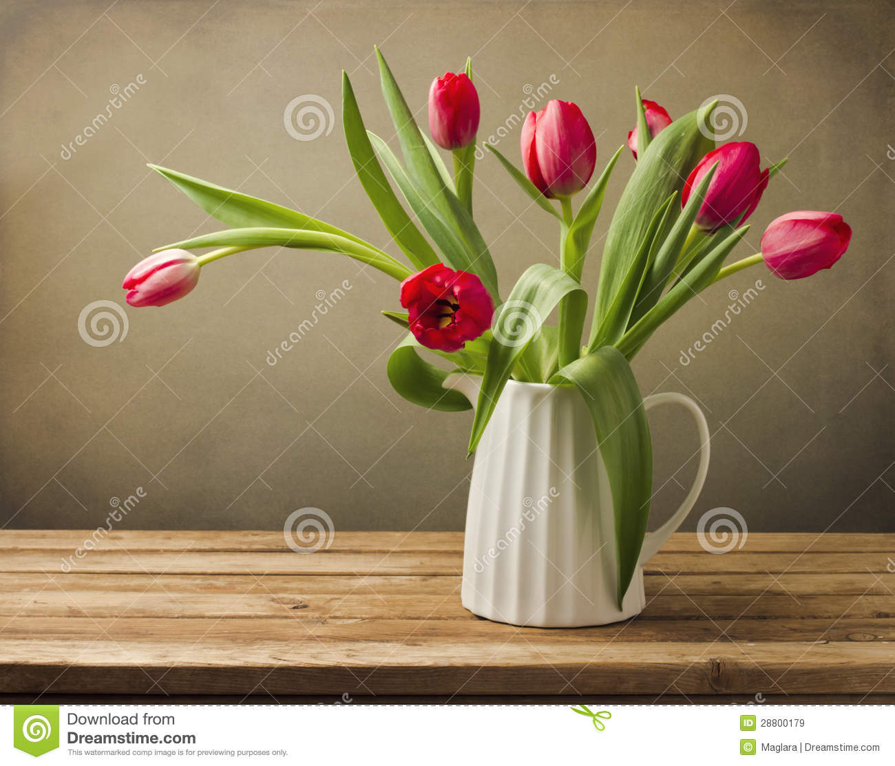 Beautiful Tulip Flower Bouquet Stock Image Image Of Cover