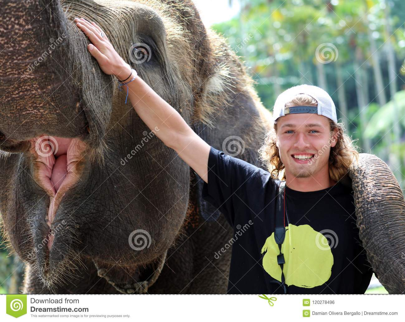 Beautiful unique elephant with man tourist at an elephants conservation reservation in Bali Indonesia