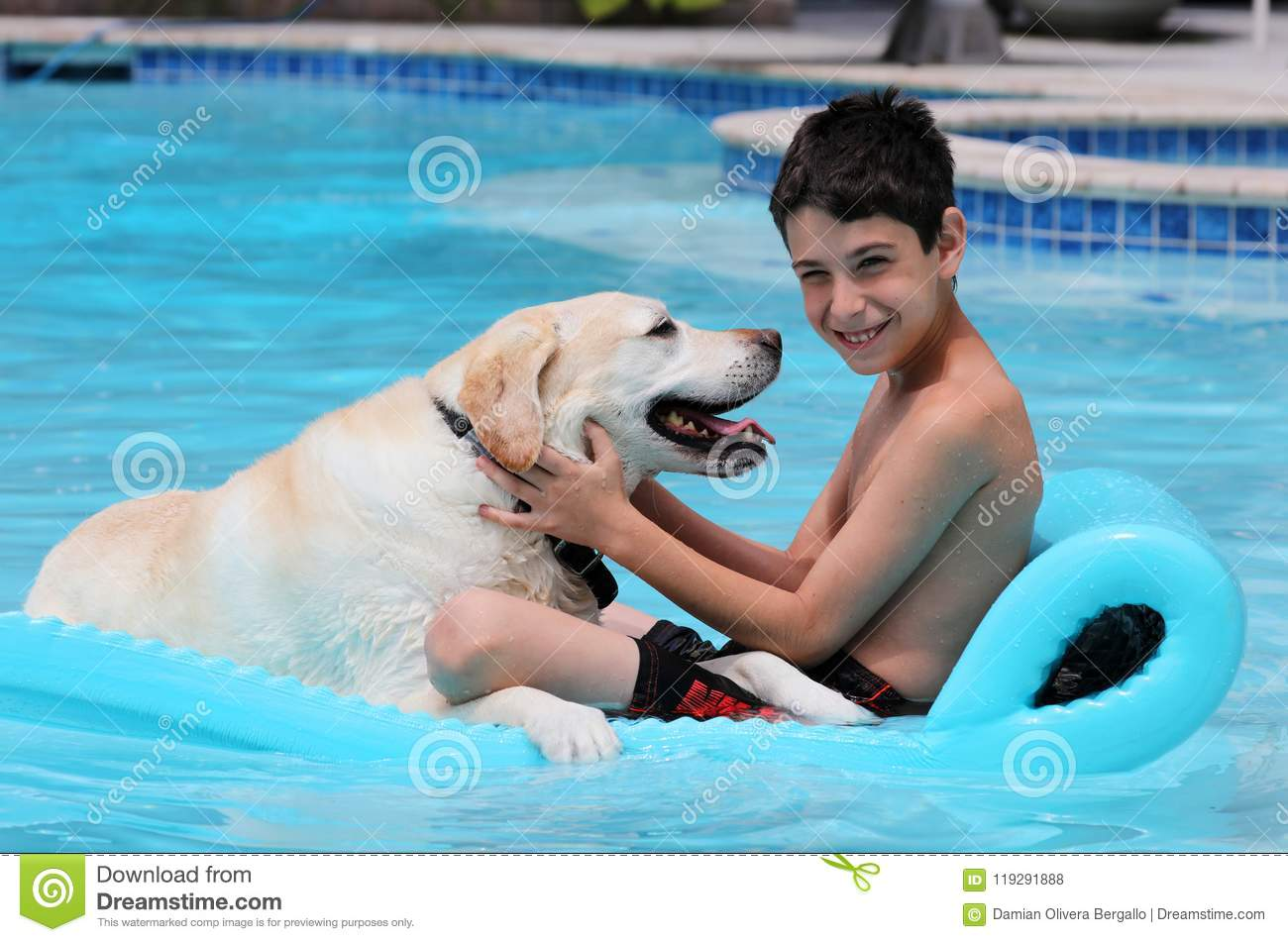 Beautiful unique golden retriever labrador dog and boy relaxing at the pool in a floating bed, dog super funny.