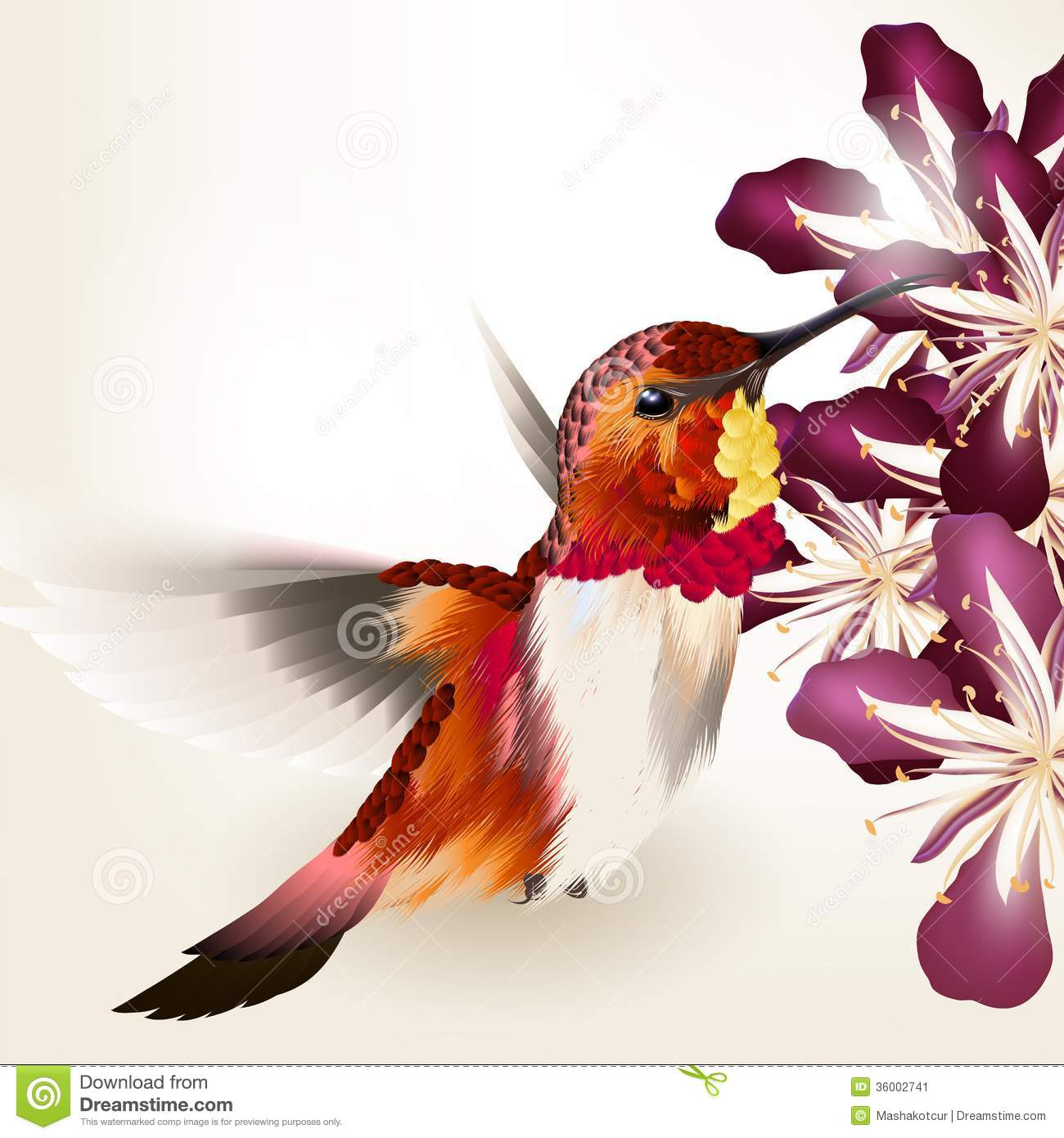 Beautiful Vector Realistic Humming Bird With Flowers Stock Vector
