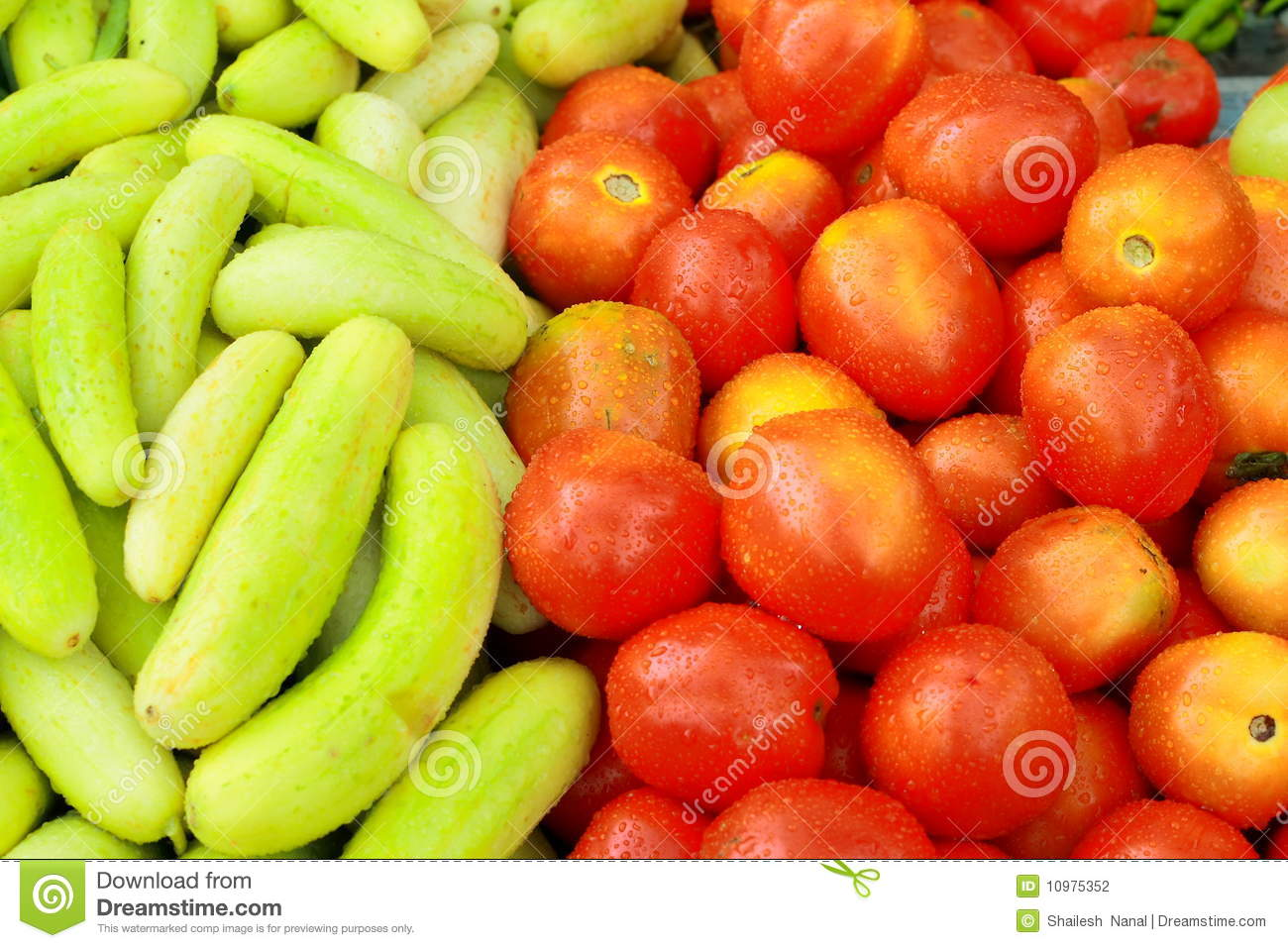 Beautiful vegetables stock photography image 10975352 for Beautiful vegetables