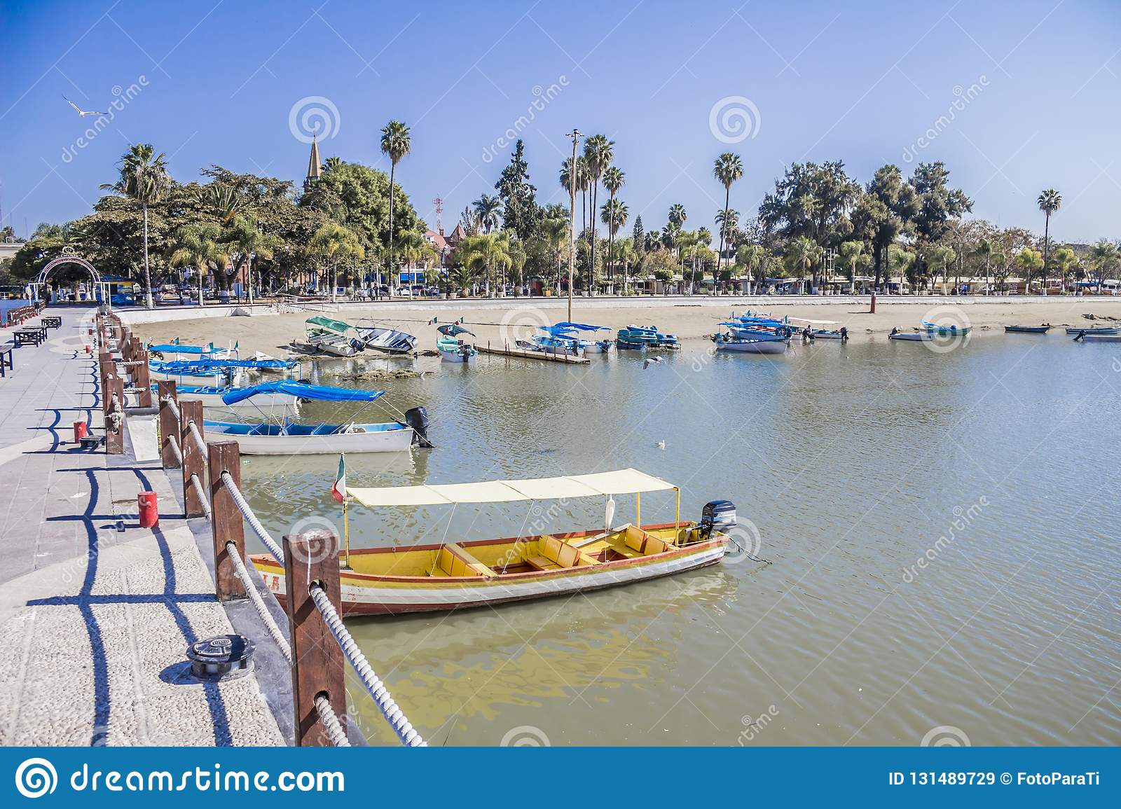 Beautiful view of boats on a pier with palm in the Chapala lake