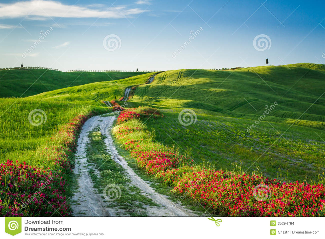 Beautiful view of green fields and meadows at sunset in for Green italy